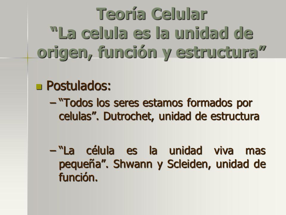 Teoría Celular La celula es la unidad de origen, función y estructura
