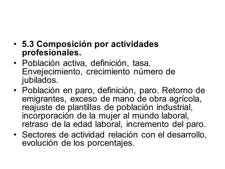 5.3 Composición por actividades profesionales.