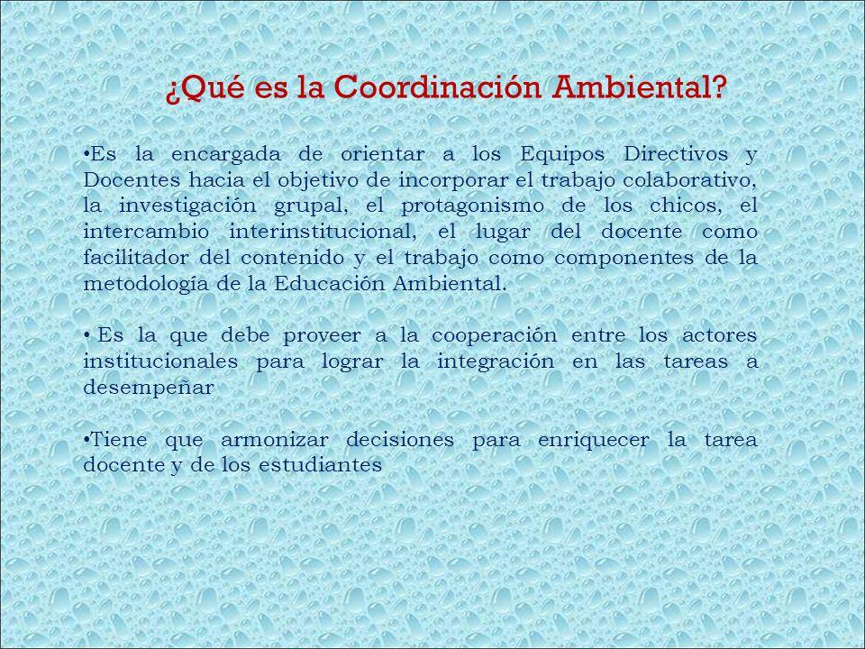 ¿Qué es la Coordinación Ambiental