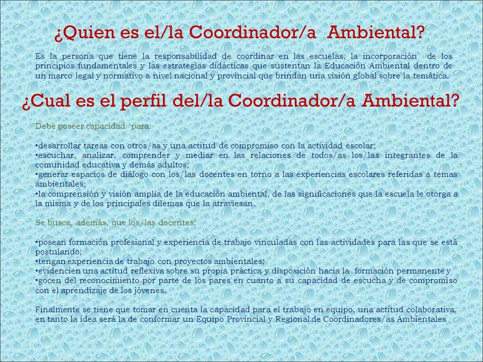 ¿Quien es el/la Coordinador/a Ambiental
