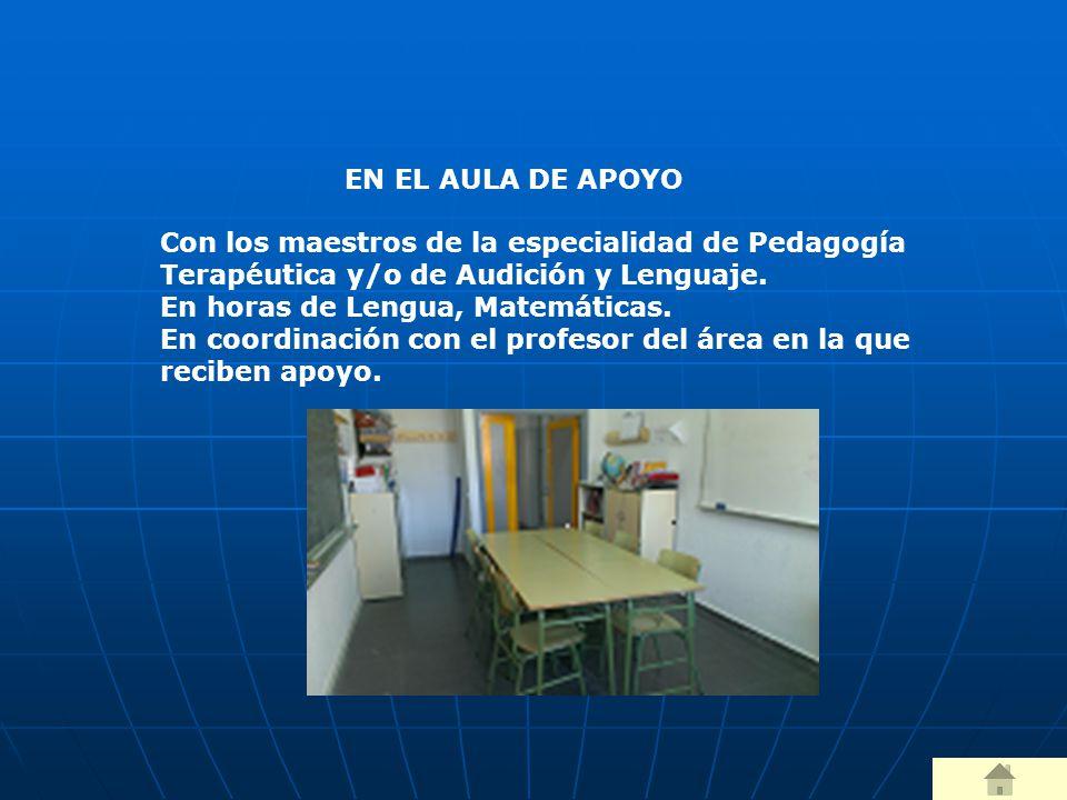 EN EL AULA DE APOYO Con los maestros de la especialidad de Pedagogía Terapéutica y/o de Audición y Lenguaje.