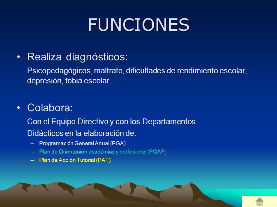 FUNCIONES Realiza diagnósticos: Colabora: