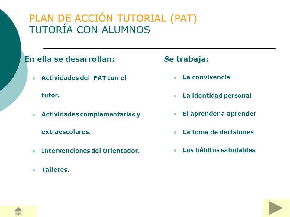 PLAN DE ACCIÓN TUTORIAL (PAT) TUTORÍA CON ALUMNOS