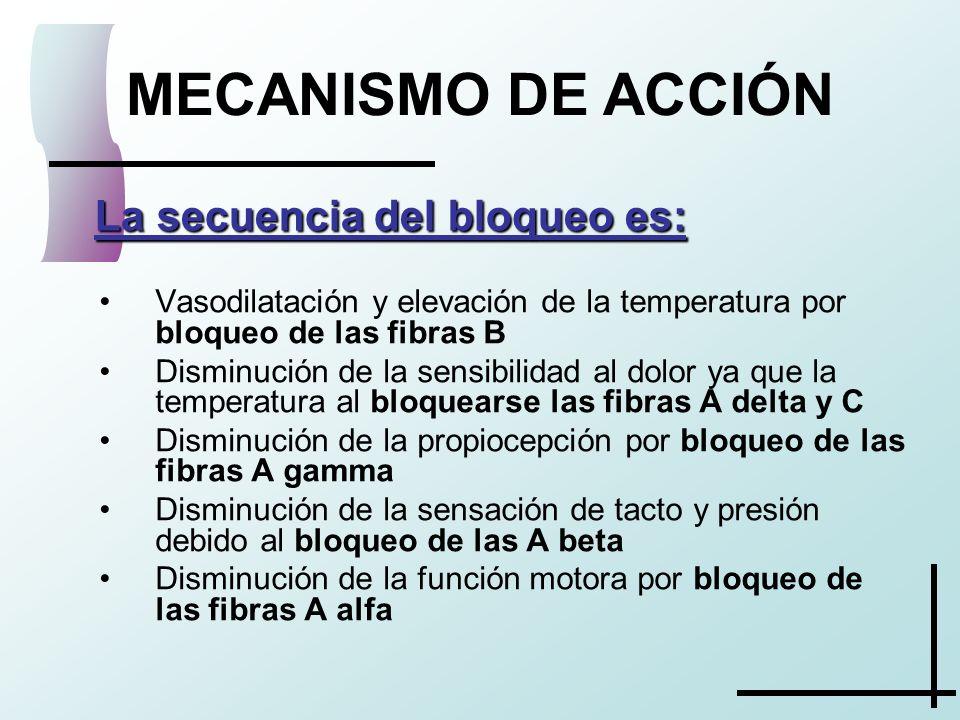 MECANISMO DE ACCIÓN La secuencia del bloqueo es: