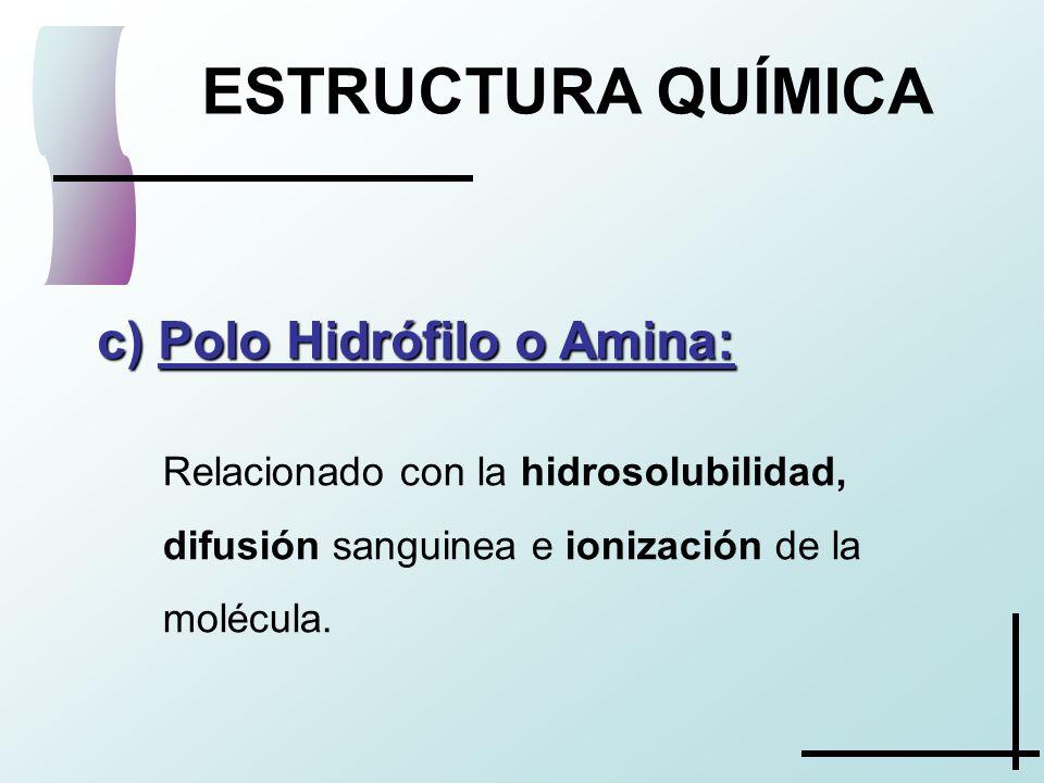 ESTRUCTURA QUÍMICA Polo Hidrófilo o Amina:
