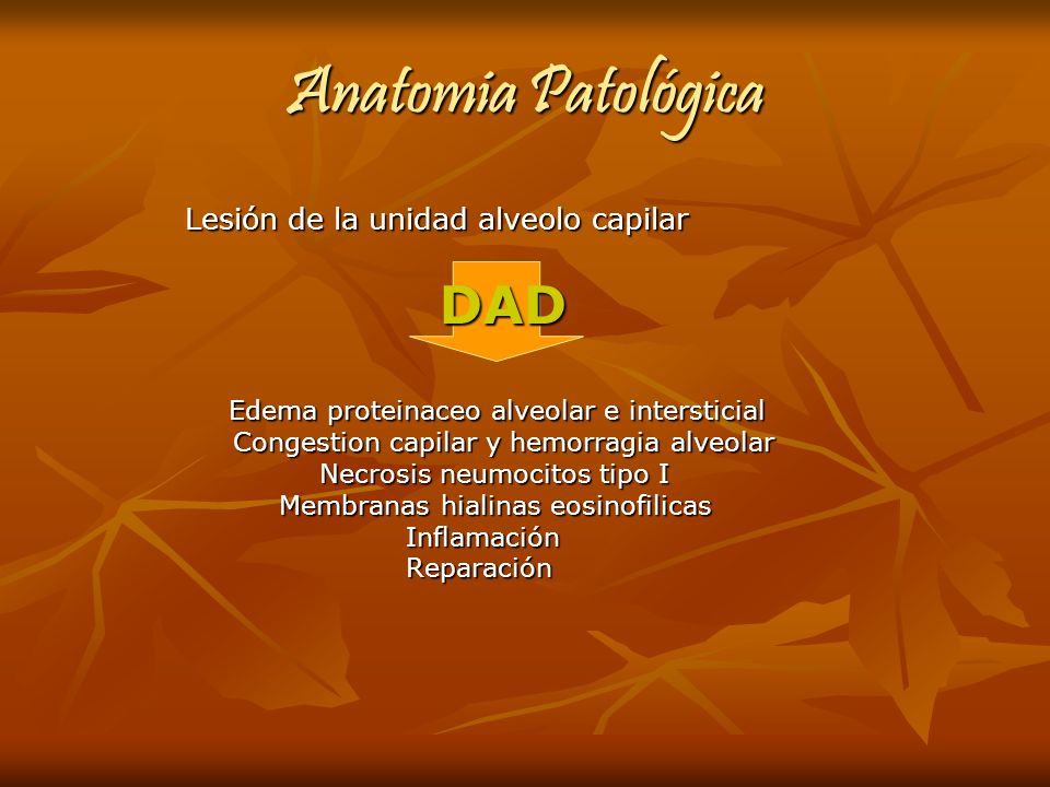 Anatomia Patológica Lesión de la unidad alveolo capilar DAD