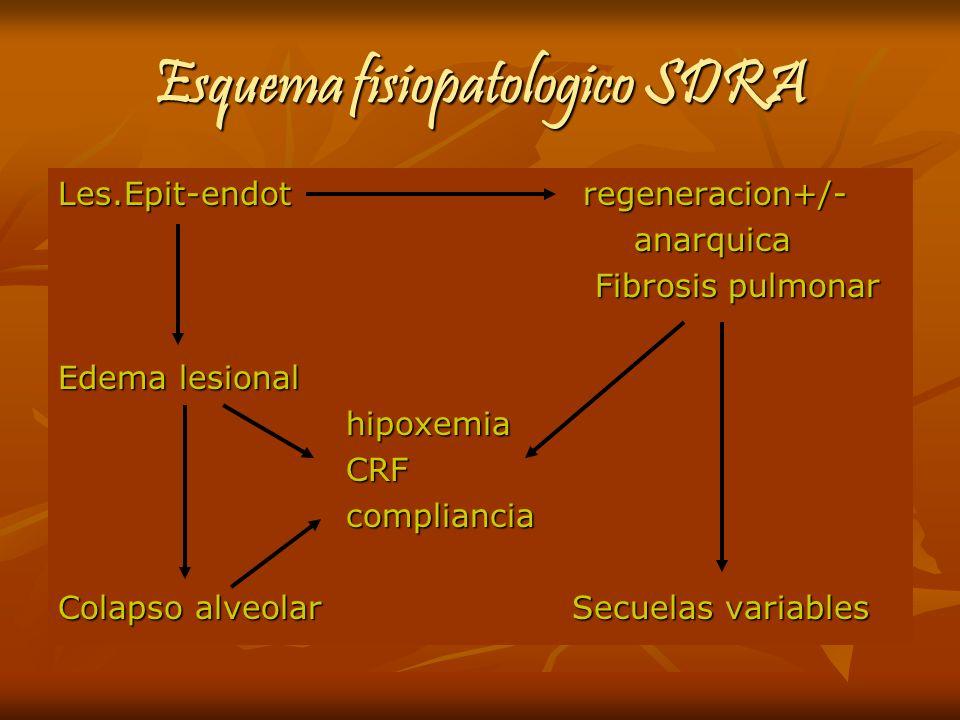 Esquema fisiopatologico SDRA