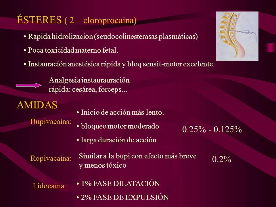 ÉSTERES ( 2 – cloroprocaina)