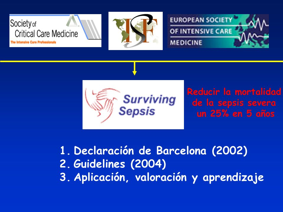 Declaración de Barcelona (2002) Guidelines (2004)
