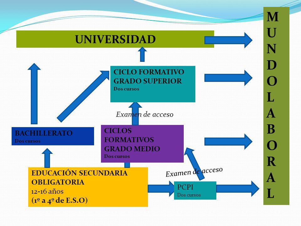 M U N D O L A B R UNIVERSIDAD CICLO FORMATIVO GRADO SUPERIOR