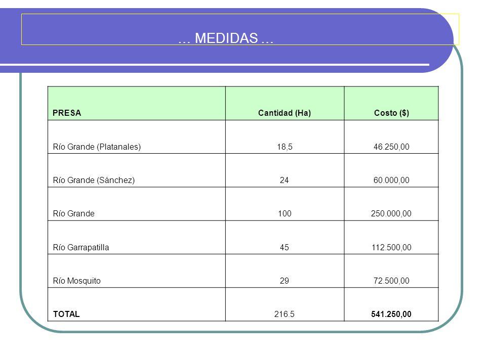 … MEDIDAS … PRESA Cantidad (Ha) Costo ($) Río Grande (Platanales) 18,5