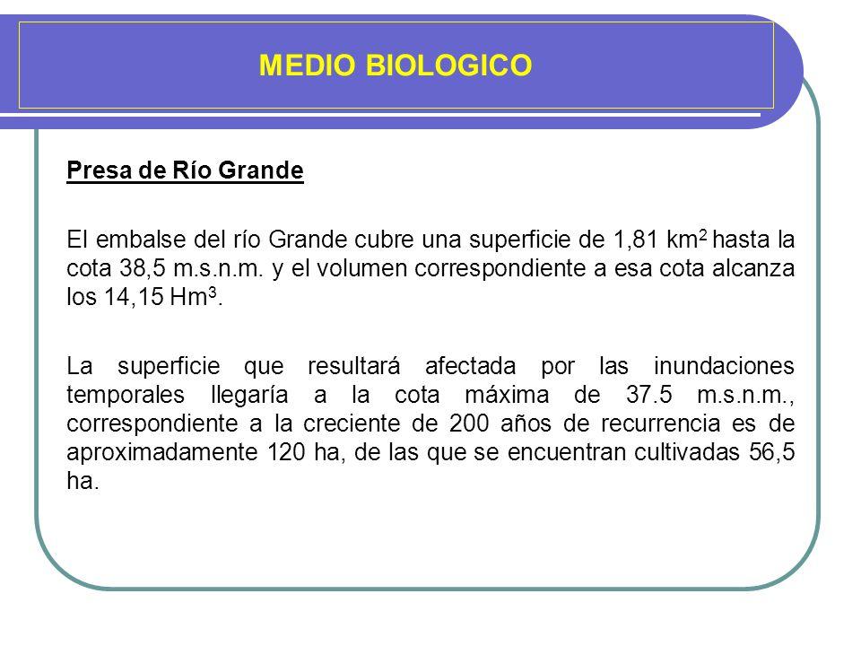 MEDIO BIOLOGICO Presa de Río Grande