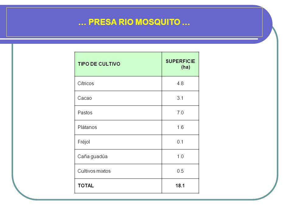 … PRESA RIO MOSQUITO … TIPO DE CULTIVO SUPERFICIE (ha) Cítricos 4.8