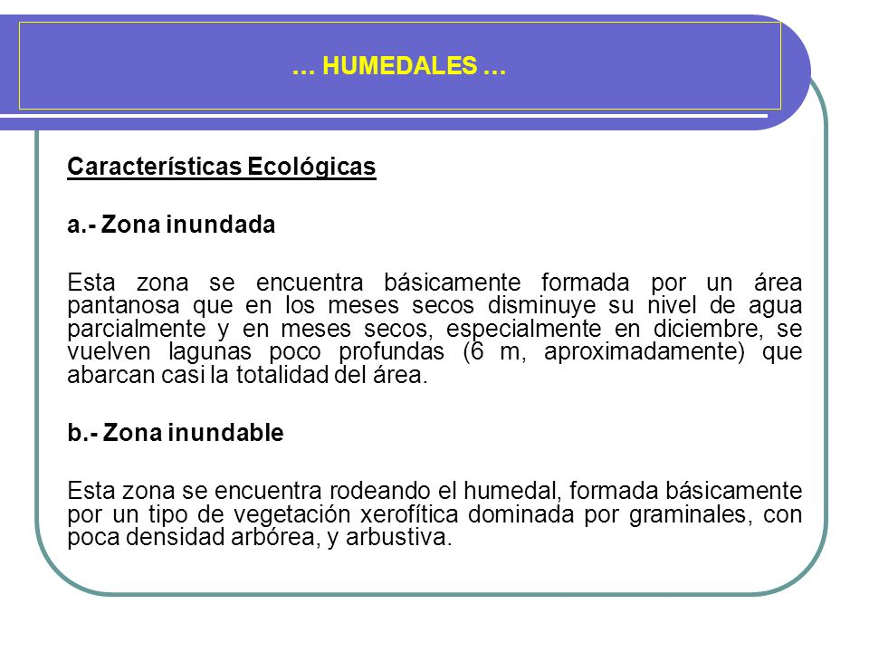 … HUMEDALES … Características Ecológicas. a.- Zona inundada.
