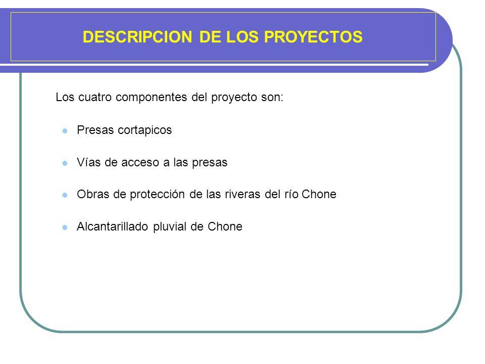 DESCRIPCION DE LOS PROYECTOS
