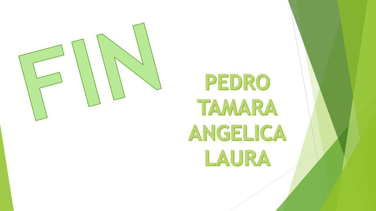 FIN PEDRO TAMARA ANGELICA LAURA