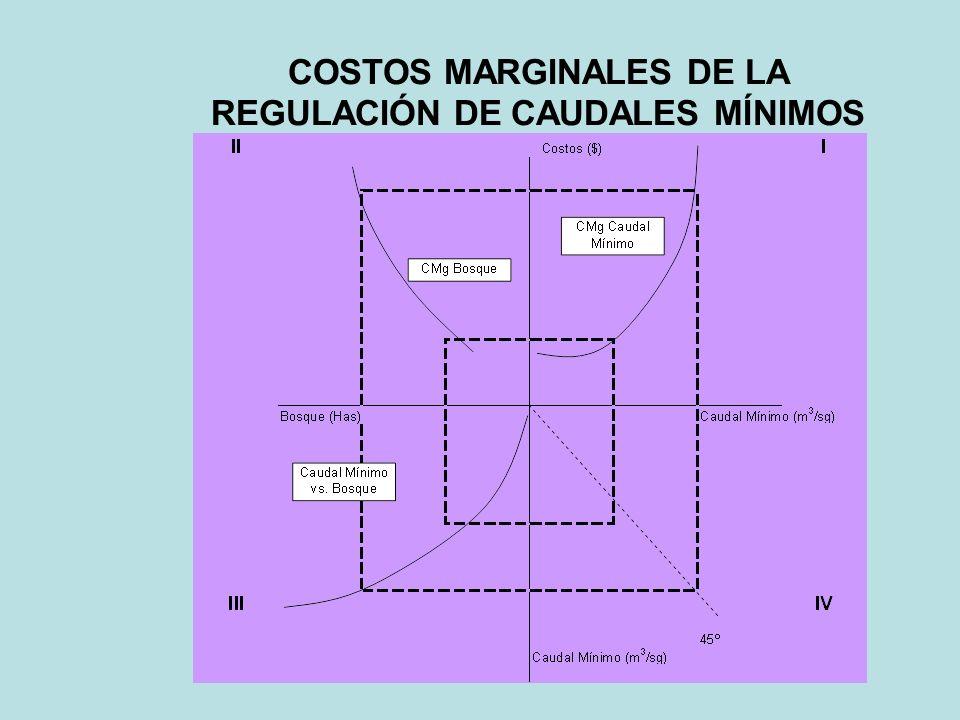 COSTOS MARGINALES DE LA REGULACIÓN DE CAUDALES MÍNIMOS