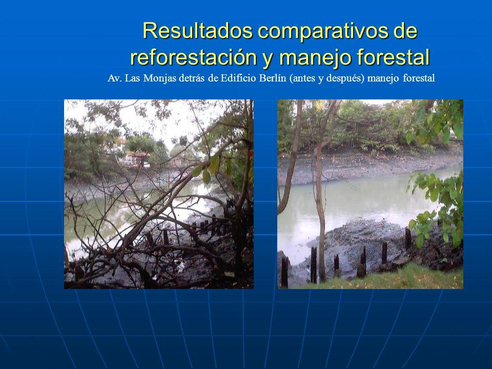 Resultados comparativos de reforestación y manejo forestal