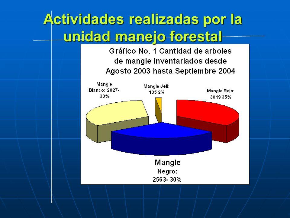Actividades realizadas por la unidad manejo forestal