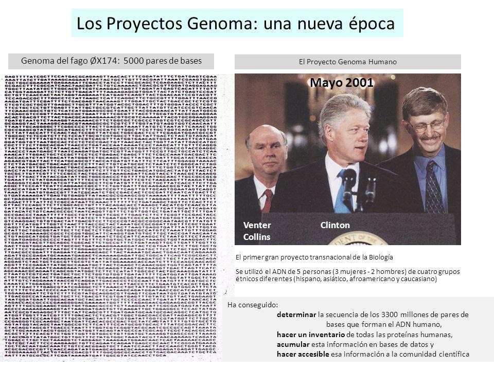Los Proyectos Genoma: una nueva época
