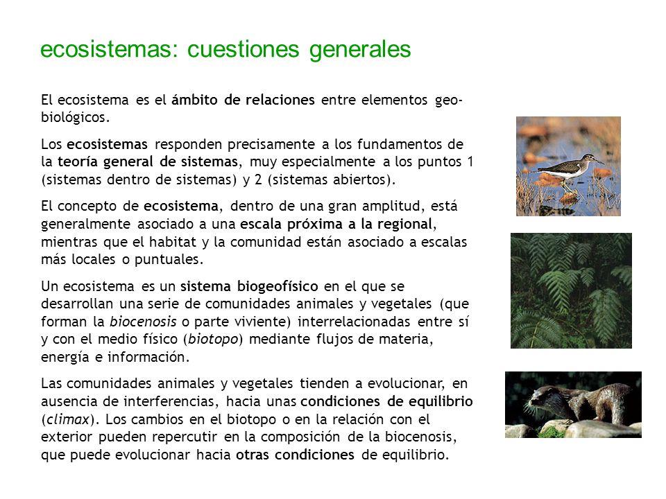 ecosistemas: cuestiones generales