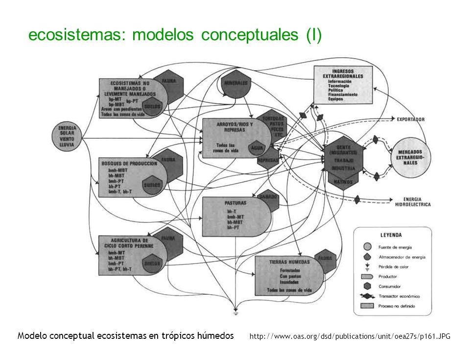 ecosistemas: modelos conceptuales (I)