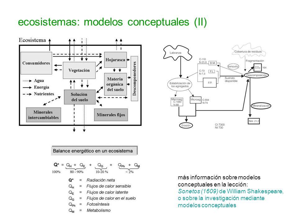 ecosistemas: modelos conceptuales (II)