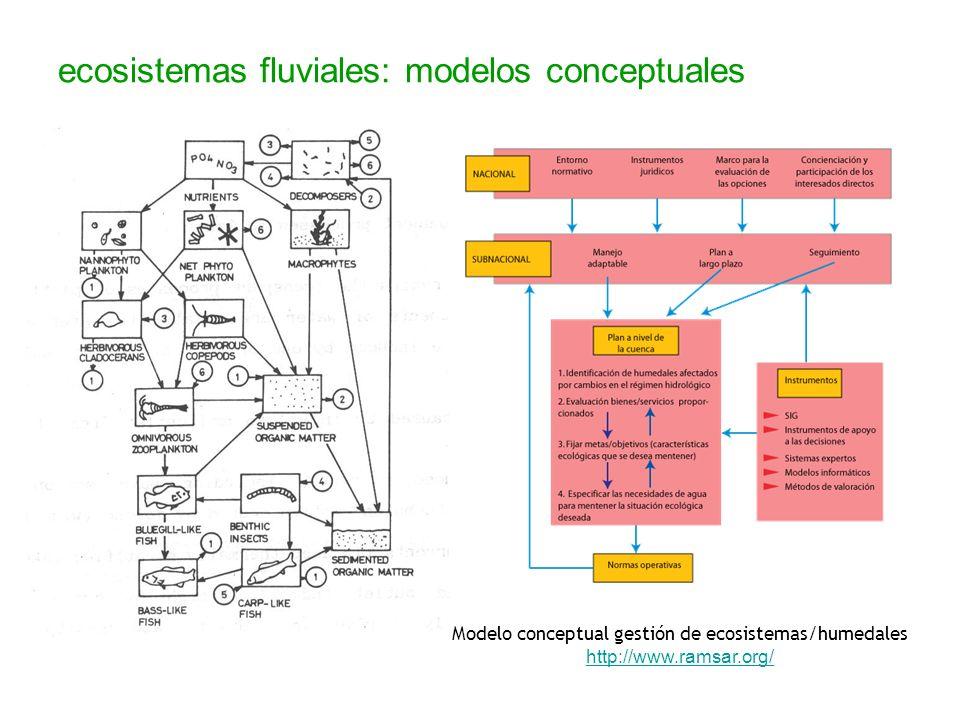 Modelo conceptual gestión de ecosistemas/humedales