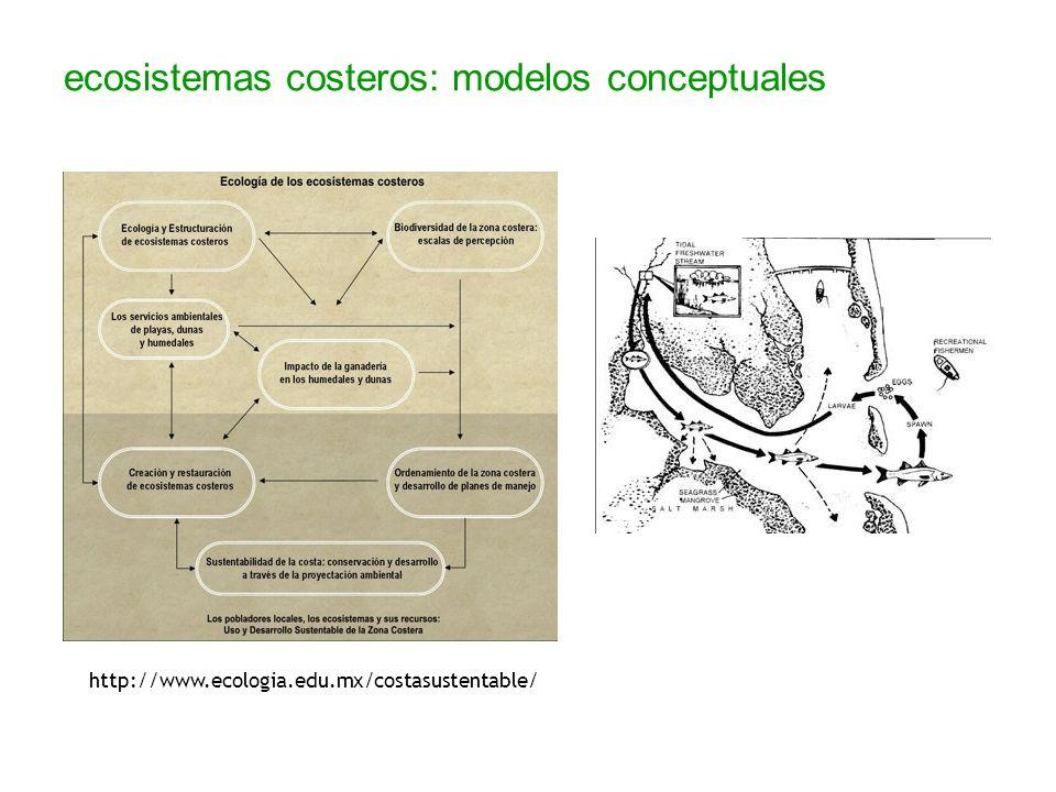 ecosistemas costeros: modelos conceptuales