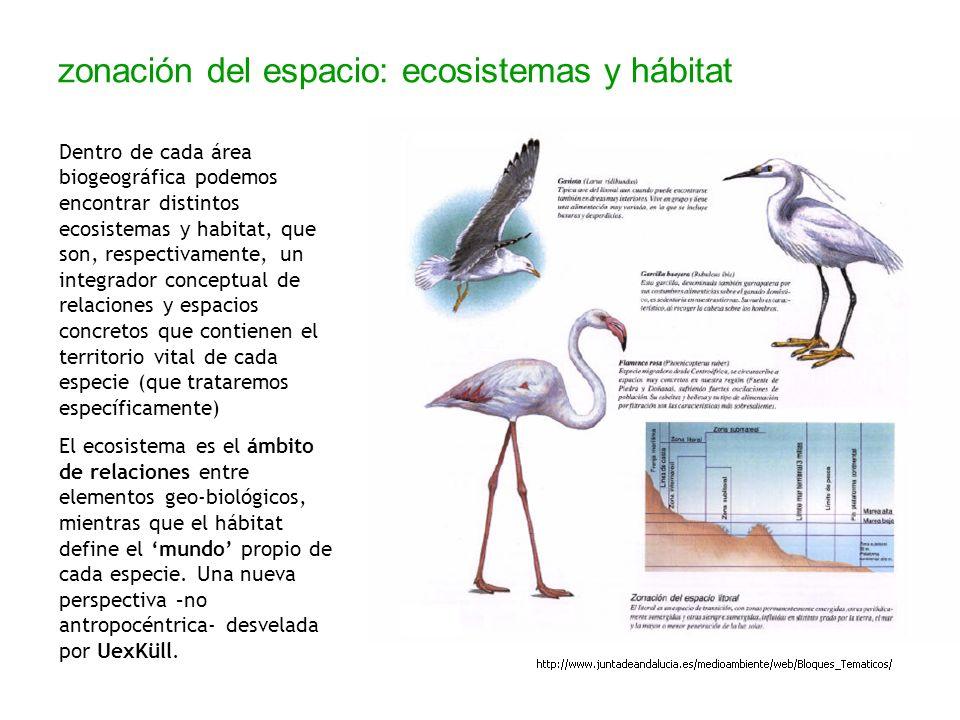 zonación del espacio: ecosistemas y hábitat