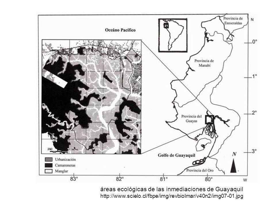 áreas ecológicas de las inmediaciones de Guayaquil