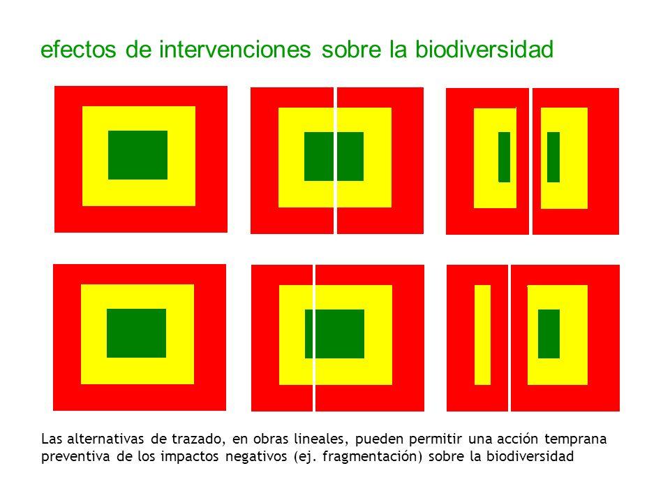 efectos de intervenciones sobre la biodiversidad