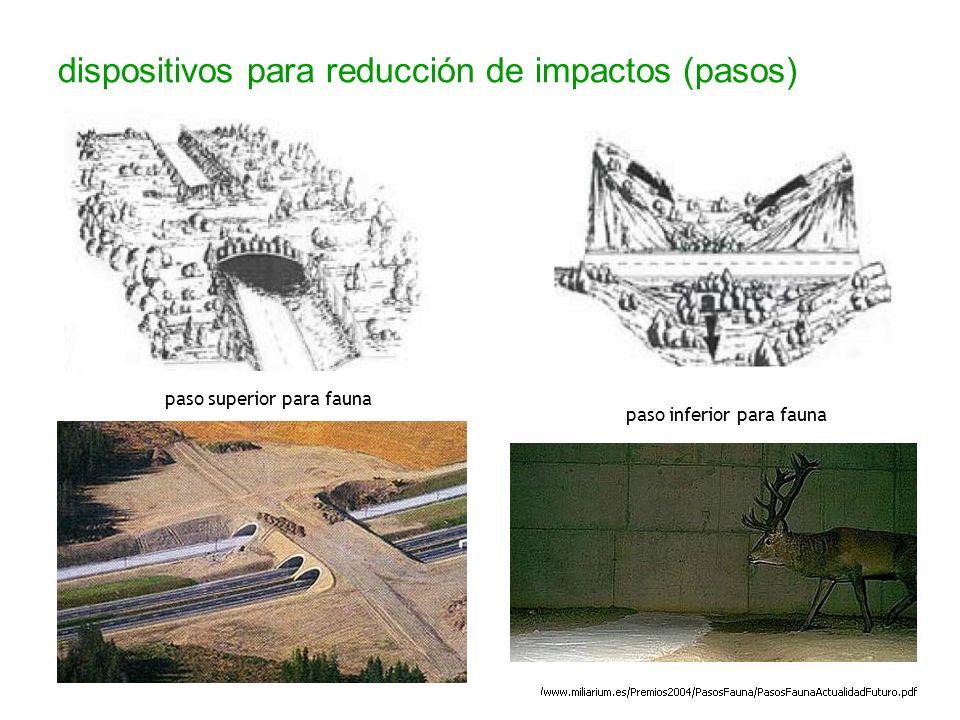 dispositivos para reducción de impactos (pasos)