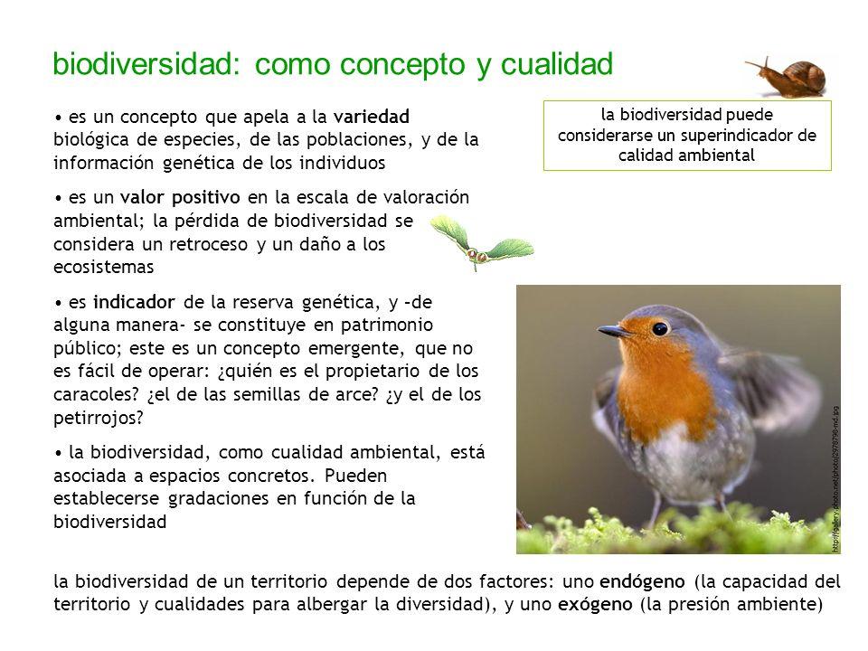 biodiversidad: como concepto y cualidad