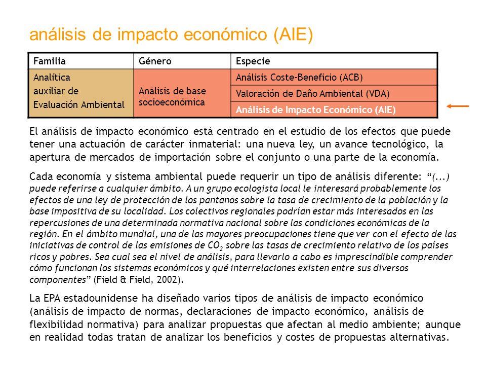 análisis de impacto económico (AIE)