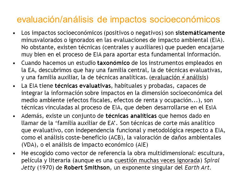 evaluación/análisis de impactos socioeconómicos