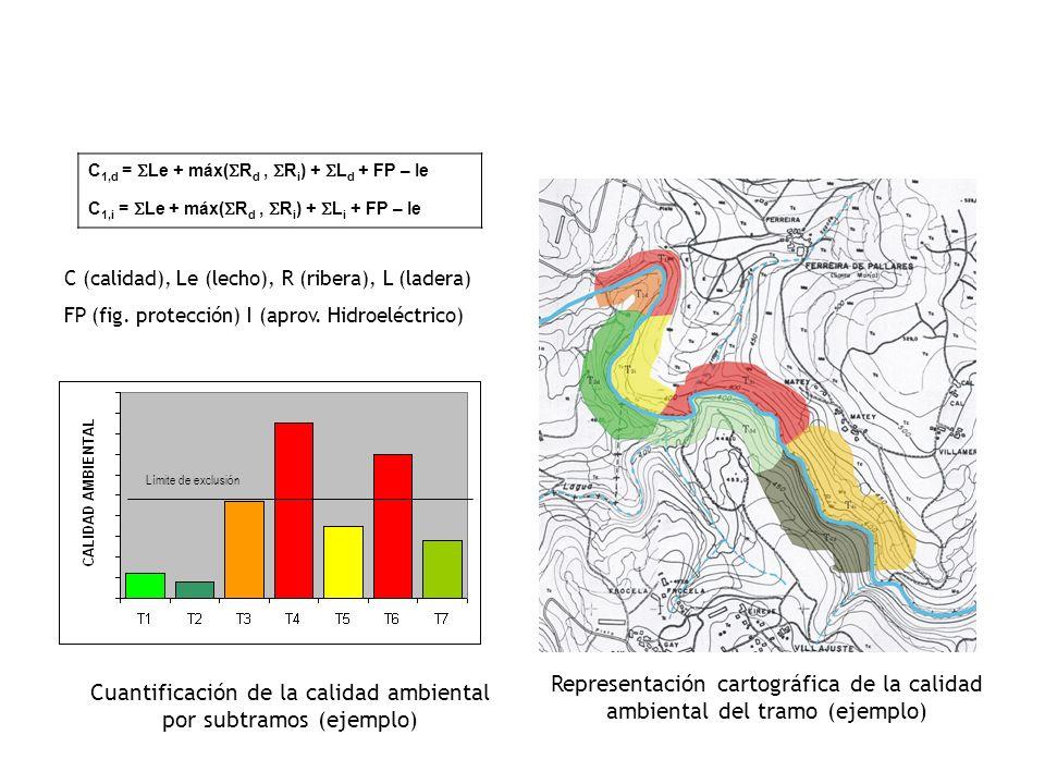 Cuantificación de la calidad ambiental por subtramos (ejemplo)