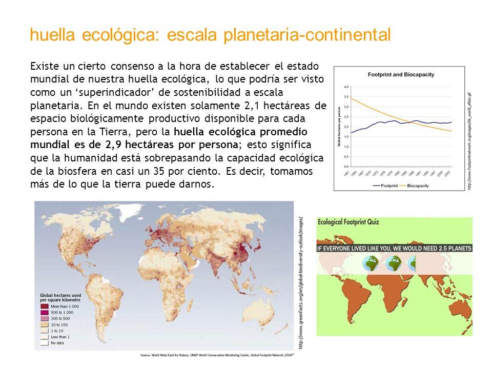 huella ecológica: escala planetaria-continental
