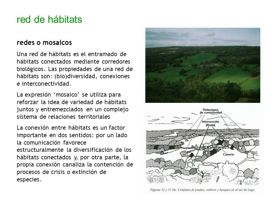 red de hábitats redes o mosaicos