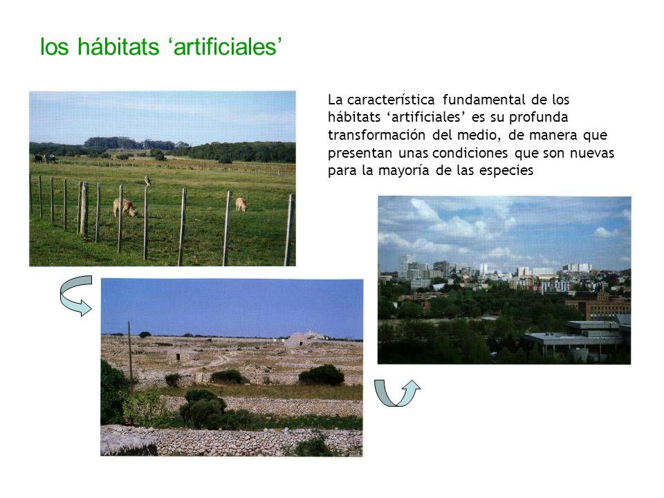 los hábitats 'artificiales'