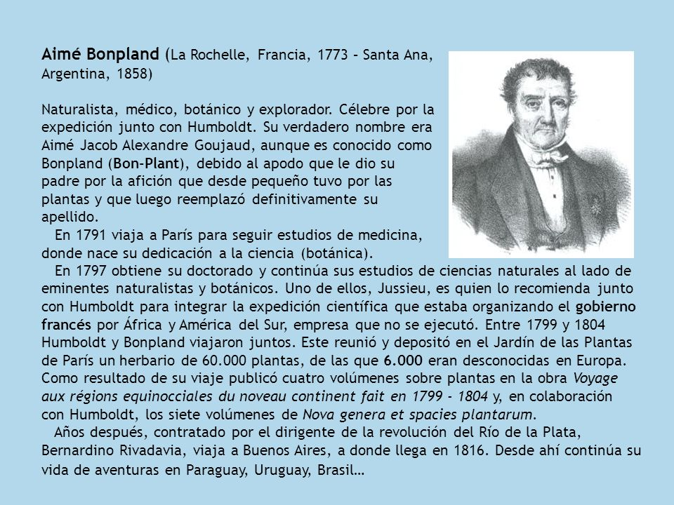Aimé Bonpland (La Rochelle, Francia, 1773 – Santa Ana, Argentina, 1858)