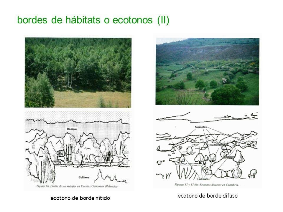 bordes de hábitats o ecotonos (II)