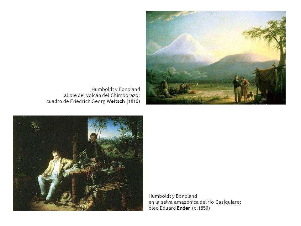Humboldt y Bonplandal pie del volcán del Chimborazo; cuadro de Friedrich Georg Weitsch (1810) Humboldt y Bonpland.