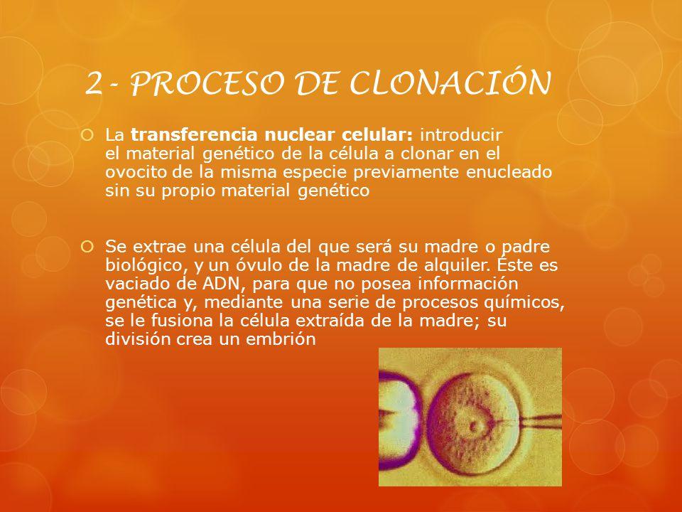 2- PROCESO DE CLONACIÓN