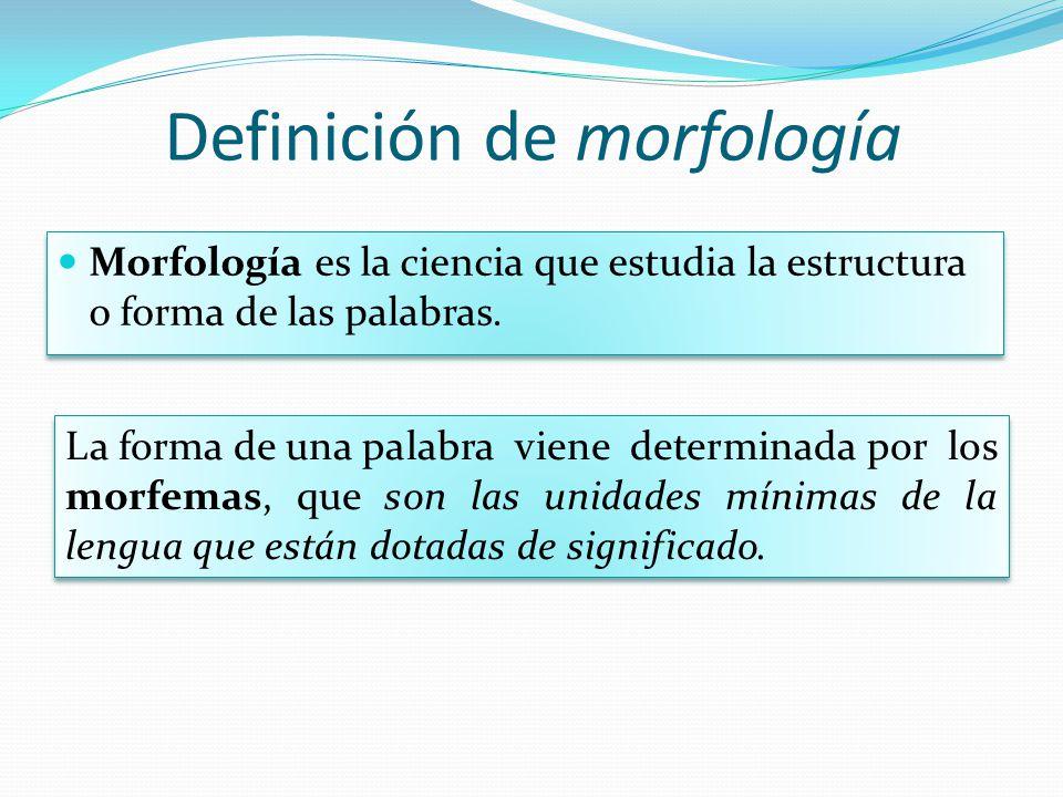 Definición de morfología