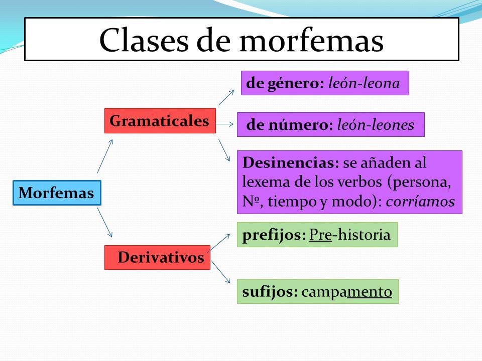 Clases de morfemas de género: león-leona Gramaticales