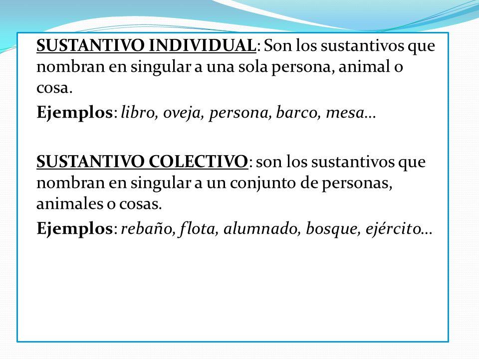 SUSTANTIVO INDIVIDUAL: Son los sustantivos que nombran en singular a una sola persona, animal o cosa.
