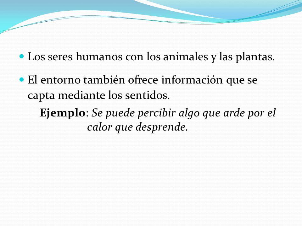Los seres humanos con los animales y las plantas.