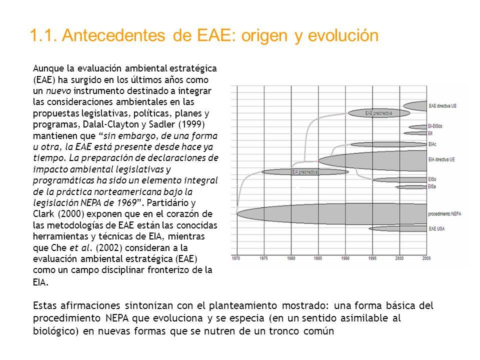 1.1. Antecedentes de EAE: origen y evolución