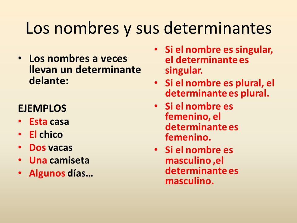 Los nombres y sus determinantes